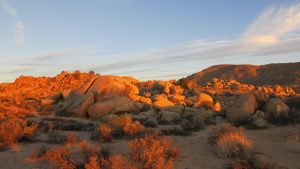 Boulders in Yucca Valley
